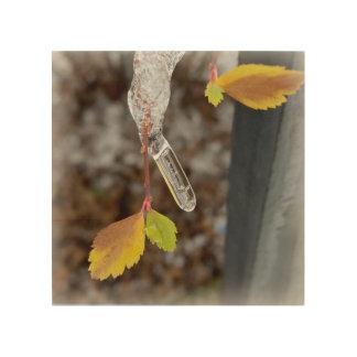 Icicle on leaf wood print