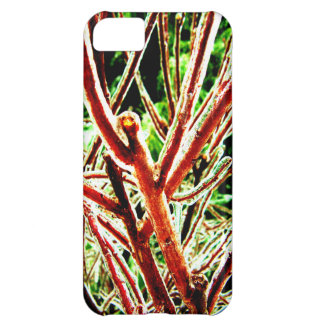 Icy Branch iPhone 5C Cover