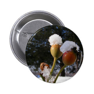 Icy Rose Hips button