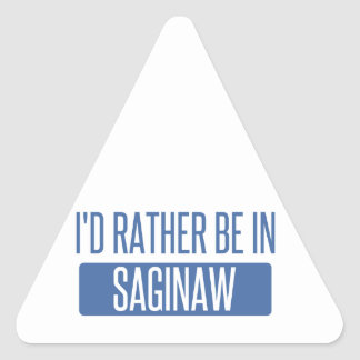 I'd rather be in Saginaw Triangle Sticker