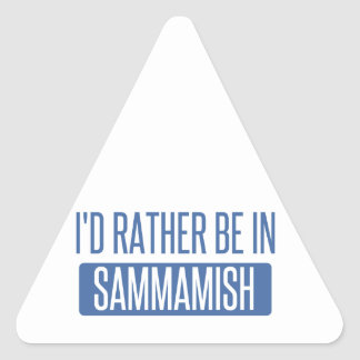 I'd rather be in Sammamish Triangle Sticker