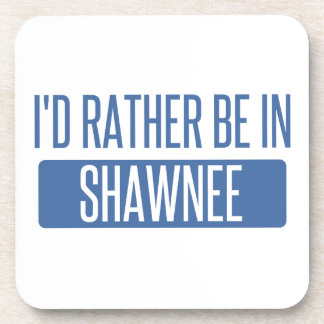I'd rather be in Shawnee Coaster