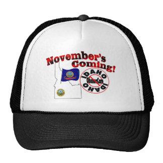 Idaho Anti ObamaCare – November's Coming! Cap