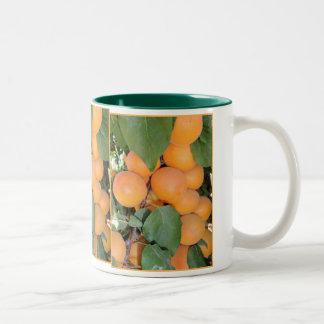 Idaho Apricots Mugs