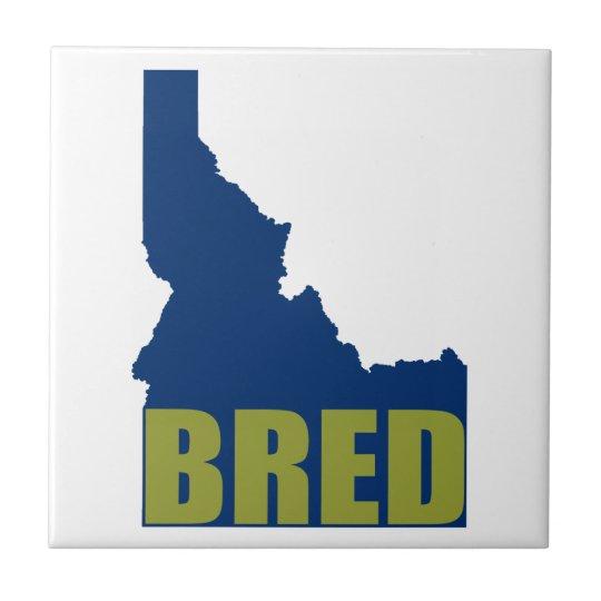 Idaho Bred Ceramic Tile