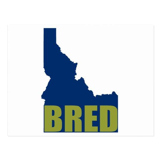 Idaho Bred Postcard