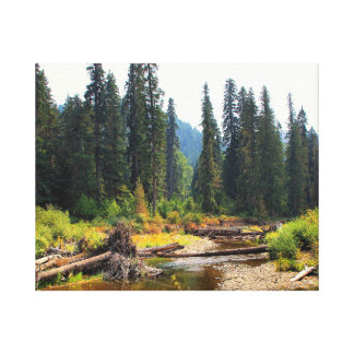 Idaho Wilderness Stretched Canvas Print