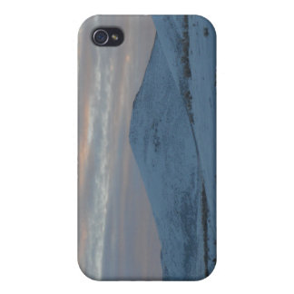 Idaho winter iPhone 4 case