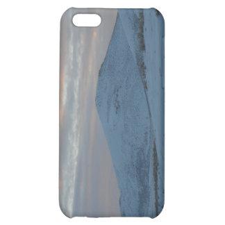 Idaho winter iPhone 5C covers