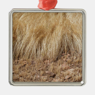 iDetail of a teff field during harvest Metal Ornament