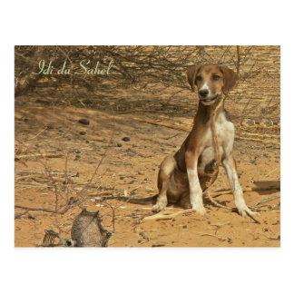 Idi postcard of the Sahel