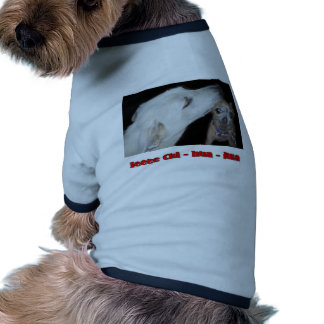 Ieee Chi hua hua Dog Shirt