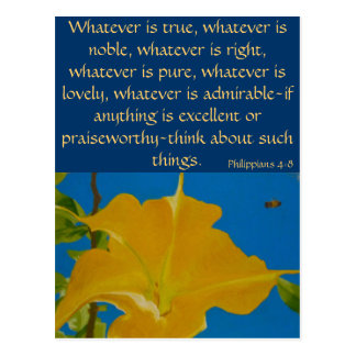 If Anything is Excellent or Praiseworthy Post Card