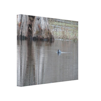 If it looks like a duck ... canvas print