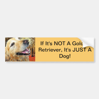If Its NOT A Golden Retriever...... Bumper Sticker