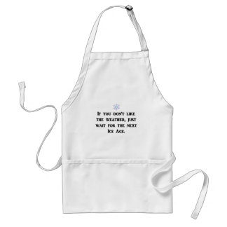if-you-dont-like-the-weather-just-wait-for-the standard apron