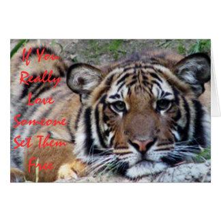 If You Love Someone... Beautiful Tiger Card