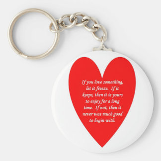 if-you-love-something-let-it-freeze key ring