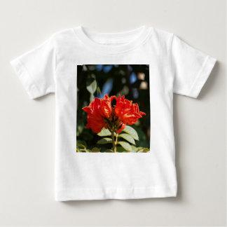 iFlowers of an African tuliptree Baby T-Shirt