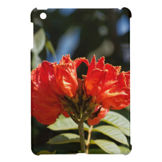 iFlowers of an African tuliptree Cover For The iPad Mini