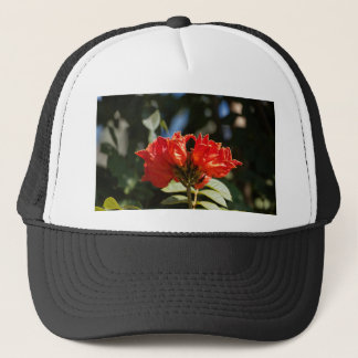 iFlowers of an African tuliptree Trucker Hat