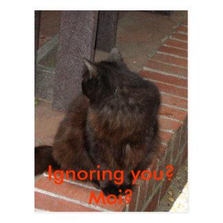 Ignoring you? Moi? Postcard