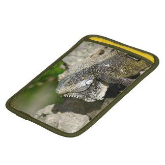 Iguana, Curacao, Caribbean islands, Photo iPad Mini Sleeve