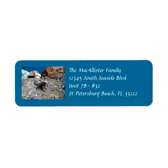 Iguana Return Address Labels