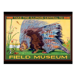 Illinois Central to Field Museum Porcupine Postcard