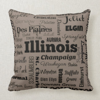 Illinois typography throw pillow in gray & black