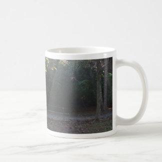 Illuminated Bench Mugs