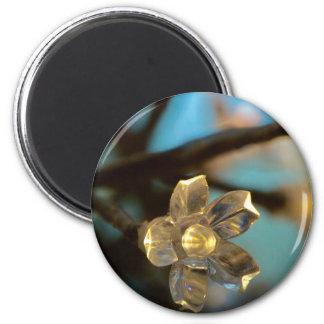 Illuminated Cherry Blossom 6 Cm Round Magnet
