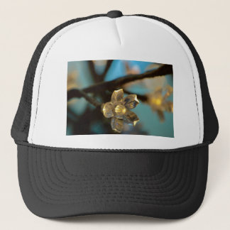 Illuminated Cherry Blossom Trucker Hat