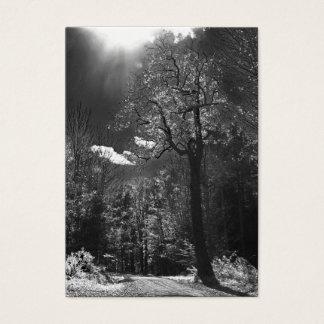 Illuminated Tree ATC Business Card