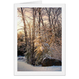 Illuminated Winter Card