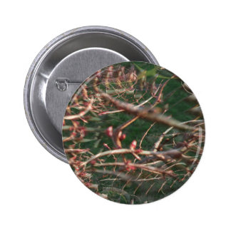 Illusion Of A Tree Button
