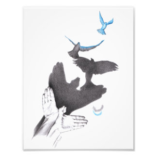 Illusions hands shadow birds Photo prints