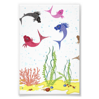 Illustrated Beta Fish Photo Print