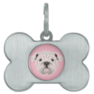 Illustrated portrait of English Bulldog puppy. Pet Name Tag