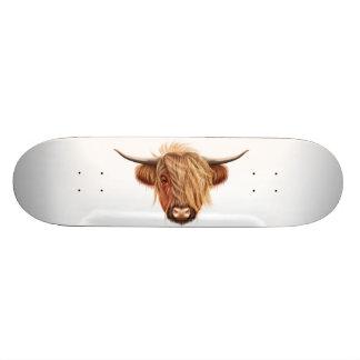 Illustrated portrait of Highland cattle. Skateboards