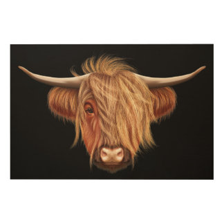 Illustrated portrait of Highland cattle. Wood Prints