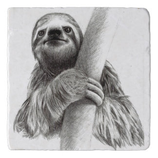 Illustrated Sloth Trivet