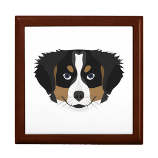Illustration Bernese Mountain Dog Gift Box
