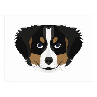 Illustration Bernese Mountain Dog Postcard