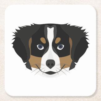Illustration Bernese Mountain Dog Square Paper Coaster