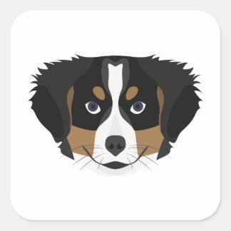 Illustration Bernese Mountain Dog Square Sticker