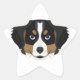 Illustration Bernese Mountain Dog Star Sticker
