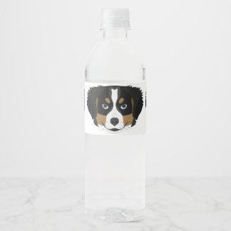 Illustration Bernese Mountain Dog Water Bottle Label