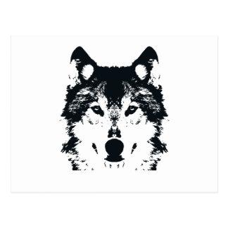 Illustration Black Wolf Postcard