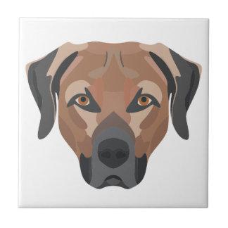 Illustration Dog Brown Labrador Ceramic Tile